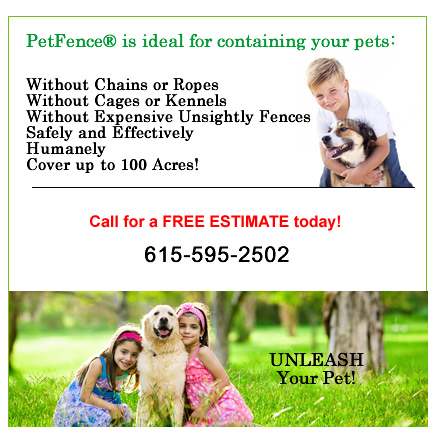 Safe pet fencing.