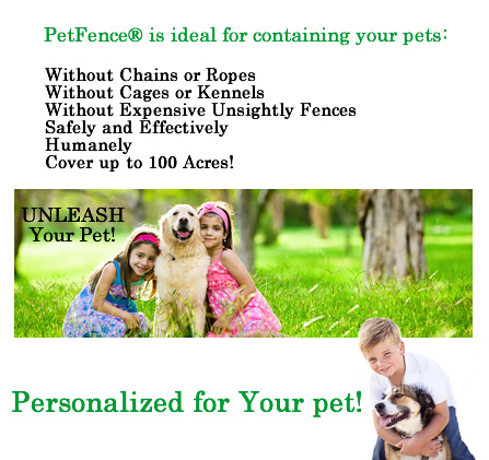 PetFence - pet fence for your pet
